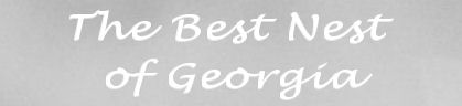 The Best Nest of Georgia Inc